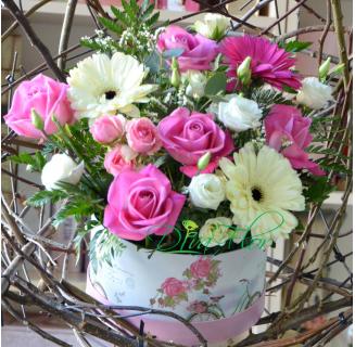 Cutie delicata roz Carmen
