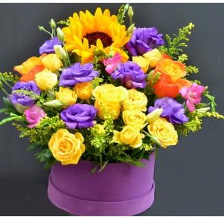 Cutie de vara cu floarea soarelui